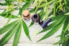 大麻草本和叶子治疗的 免版税库存图片