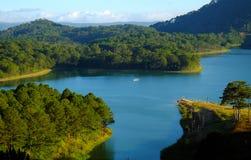 大叻,越南, eco旅行,杉木森林,大叻市 免版税图库摄影