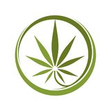 大麻 库存例证
