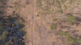 大deforestated区域顶视图  股票录像
