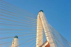 大Obukhovsky桥梁(缆绳被停留) 库存图片