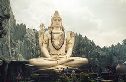 大shiva雕象 库存照片