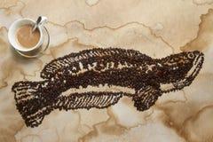 大snakehead鱼咖啡 库存图片
