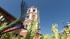 天主教徒挥动椰子棕榈叶庆祝棕枝全日