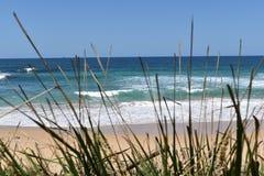 晴天伍伦贡海滩,太平洋,澳大利亚 图库摄影