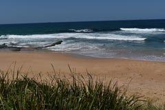 晴天伍伦贡海滩,太平洋,澳大利亚 免版税库存照片