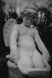 天使一点 库存图片