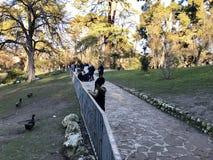 天使划分为的马德里公园retiro西班牙雕象 图库摄影