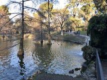 天使划分为的马德里公园retiro西班牙雕象 免版税库存图片