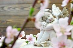 天使和春天花 图库摄影