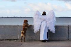 天使和狗在调查距离的河堤防站立 图库摄影