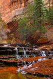 天使在美丽的地铁槽孔峡谷落下在锡安国家公园 免版税库存图片
