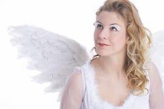 天使白色翼 免版税库存照片