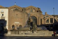 天使的圣玛丽大教堂和受难者和它的喷泉 免版税库存照片