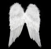 天使翼 免版税库存照片