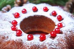 天使苹果球美丽的巧克力圣诞节丁香咖啡构成日期柠檬针桔子杉木存在设置表核桃的葡萄干 Bundt蛋糕洒与糖粉末 图库摄影