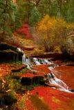 天使落下在美丽的地铁槽孔峡谷的秋天期间在锡安国家公园 库存照片