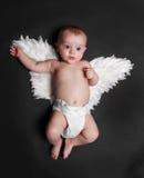 天使逗人喜爱的男婴 库存照片