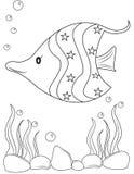 天使鱼着色页 免版税库存图片