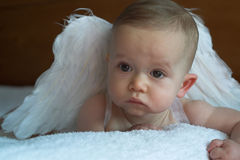 天使婴孩 库存照片