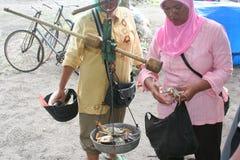 天印度尼西亚的抓住 库存照片