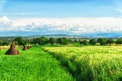 晴天和云彩在天界附近,罗马尼亚 免版税库存图片