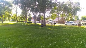 天在公园 免版税图库摄影