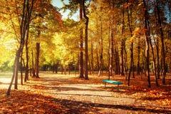 晴天在有五颜六色的秋天树和长凳的室外公园 免版税库存图片