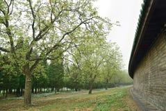 天坛公园的墙壁 库存照片