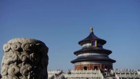 天坛在北京 中国的皇家古老建筑学 蓝色在异想天开之下的峭壁非常好的表单柱子天空石头 影视素材