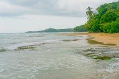 天堂加勒比海滩Cist Rica Puerto Viejo密林雨林绿松石水大海 免版税库存图片
