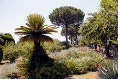 天堂在拉韦洛,意大利喜欢庭院 免版税库存图片