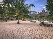 天堂海岛透明的海,蓝色,棕榈,在fyre 免版税库存图片