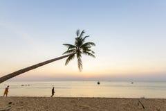 天堂海滩日落热带棕榈树 免版税库存图片