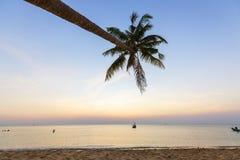 天堂海滩日落热带棕榈树 免版税图库摄影