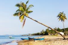 天堂海滩日落热带棕榈树 免版税库存照片