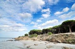 天堂海滩 库存图片