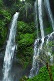 天堂瀑布,巴厘岛 自然秀丽风景背景 免版税库存图片