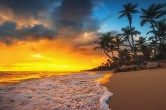 天堂热带海岛海滩,日出射击风景  免版税图库摄影