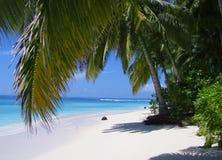 天堂的海滩 库存图片