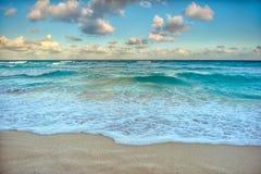 天堂自然、苍鹭和夏天在热带海滩 免版税库存图片
