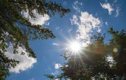 天堂般的太阳爆炸 库存照片