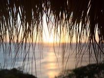 天堂通过棕榈 免版税库存照片