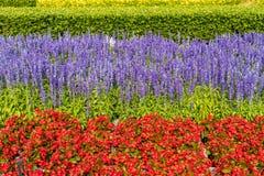 天安门广场的花圃,北京,中国 库存照片