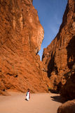 天山大峡谷全国地质公园 库存照片