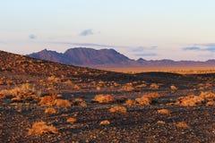 天山山的五颜六色的秋天 免版税库存照片