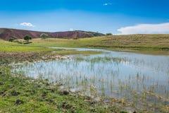 天山山的小湖 免版税库存图片