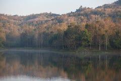 天放松与自然 库存照片
