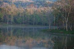 天放松与自然 免版税库存图片