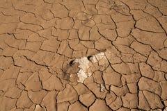 天旱和沙漠化 免版税库存照片